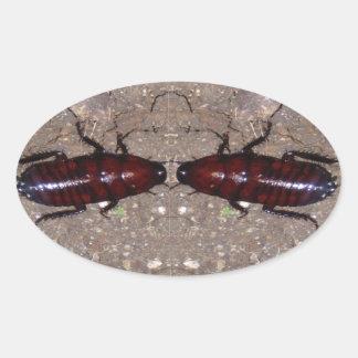 Culinária selvagem da guloseima - ciência insetos adesivos ovais
