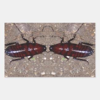 Culinária selvagem da guloseima - ciência insetos adesivo em formato retângular
