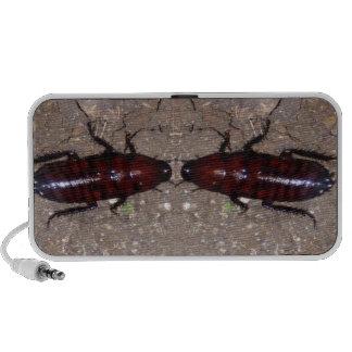 Culinária selvagem da guloseima - ciência, insetos caixinha de som para notebook