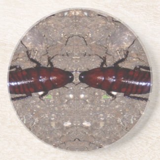 Culinária selvagem da guloseima - ciência insetos porta-copo