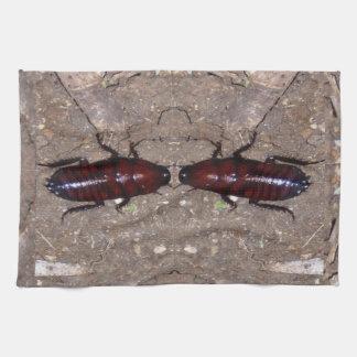 Culinária selvagem da guloseima - ciência, insetos pano de prato