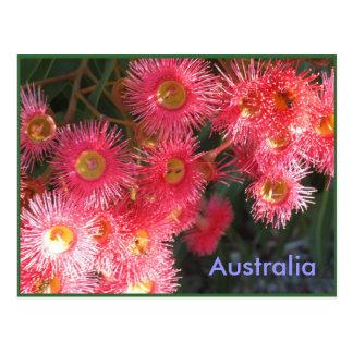 Cumprimentos de Austrália Cartão Postal