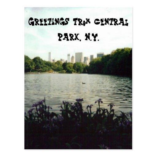 Cumprimentos do Central Park, N.Y. Cartões Postais