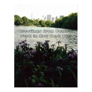 Cumprimentos do Central Park na Nova Iorque Cartão Postal