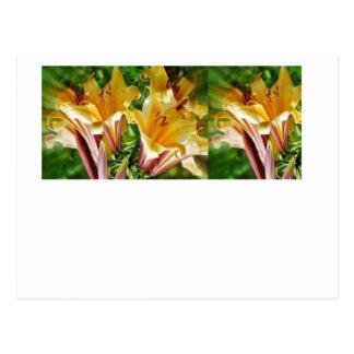 Cumprimentos florais originais Selvagem exótico d Cartão Postal
