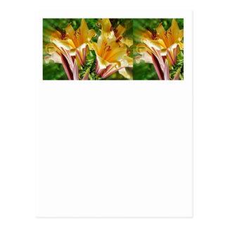 Cumprimentos florais originais Selvagem exótico d Cartao Postal