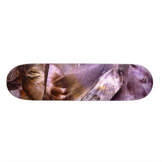 """da """"skate do fulgor Auto-consciência"""""""