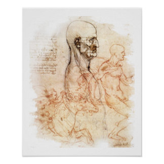 da Vinci - homem e cavalo Poster