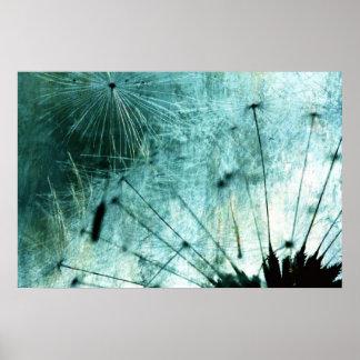 Dandelion espécie - Pusteblume arte 2012 006 Poster