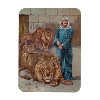Daniel no antro do leão foto com ímã retangular
