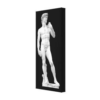 David por canvas de Michelangelo