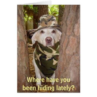 De onde você tem escondido ultimamente? cartão comemorativo