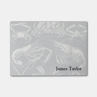 Decapoda de Ernst Haeckel Bloquinhos De Notas