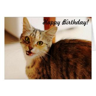 Deixe este gato desejar um feliz aniversario! cartão comemorativo