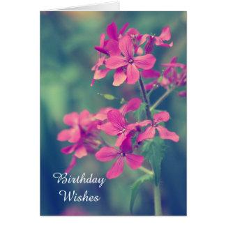 Desejos do aniversário, pétalas florais do Phlox Cartão Comemorativo