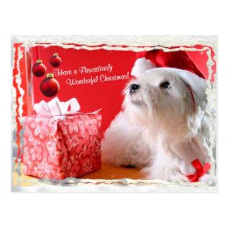 Desejos do Natal de Terrier branco de montanhas Cartão Postal