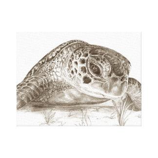 Desenho da tartaruga de mar verde impressão em tela