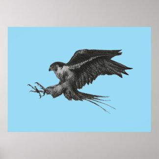 Desenho do falcão de peregrino em canvas pôster