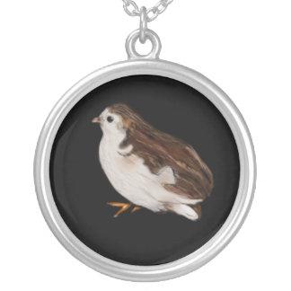 Desenho do pássaro colar banhado a prata