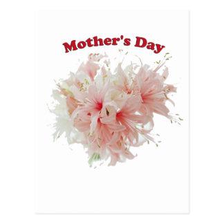Dia das mães cartão postal