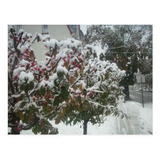 Dia de inverno cartão postal
