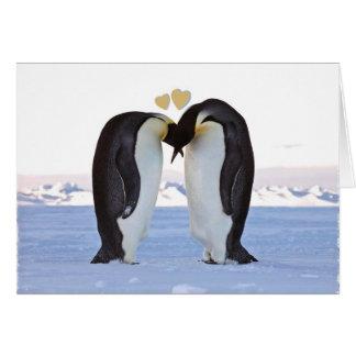 Dia dos namorados, dois pinguins no amor, corações cartão comemorativo