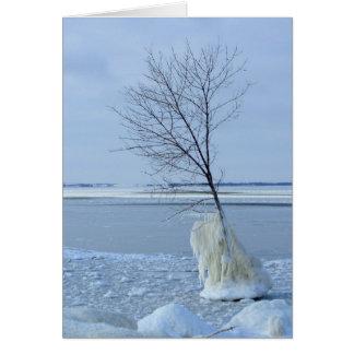 Diabos lago, North Dakota Cartão