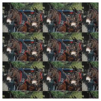 dias da mula tecido