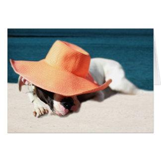 Dias de cão do verão no litoral cartão