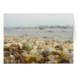 Diferença - Shell e seixos na praia Cartão