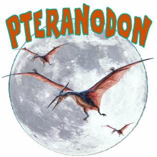 Dinossauro de Pteranodon Escultura De Foto