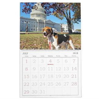 Distrito do cão calendário de 18 meses