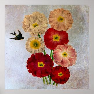 Do pássaro botânico da andorinha das flores do poster