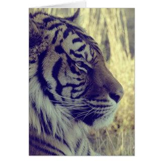 Do tigre da cara vintage especial do efeito da luz cartão comemorativo