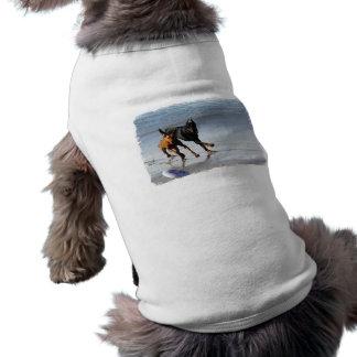 Doberman e Rhodesian Ridgeback - jogo do Frisbee Camisa Sem Mangas Para Cachorro