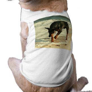 Doberman na imagem da pintura da praia camisa para caes
