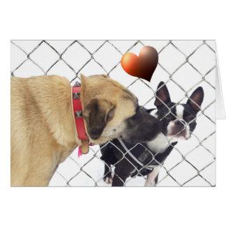 dogs em love cartão