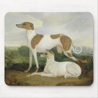 Dois galgos em uma paisagem (óleo em canvas) mouse pad