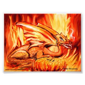 Dragão e ovo do fogo impressão de foto