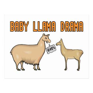 Drama do lama do bebê cartao postal