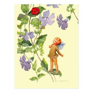 Duende e joaninha da pervinca cartão postal