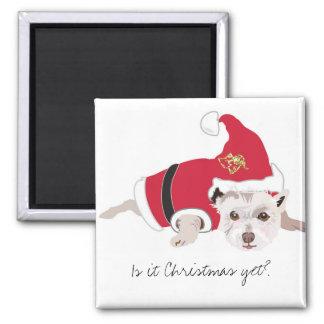 É Natal ainda? Ímã bonito do cão Ímã Quadrado