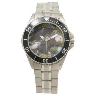 Eagle um relógios
