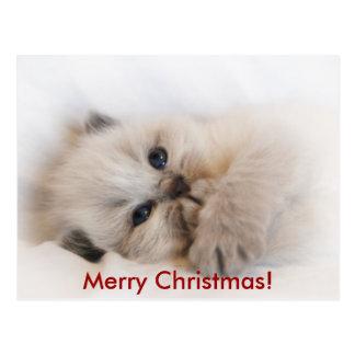 ebay 003, Feliz Natal! Cartão Postal