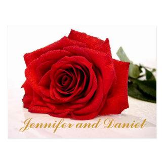Economias do casamento do Natal a rosa vermelha da Cartão Postal