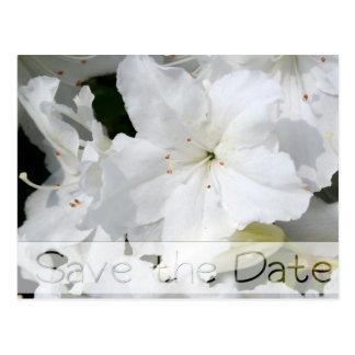 Economias florais do casamento das azáleas o cartão postal