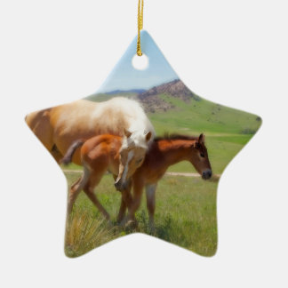 Égua da foto do cavalo e de casa e de cozinha do ornamento de cerâmica estrela