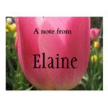 Elaine Cartao Postal