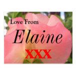 Elaine Cartão Postal