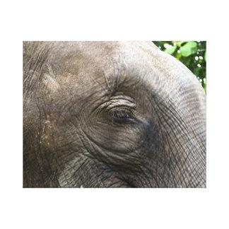 Elefante asiático impressão em tela canvas